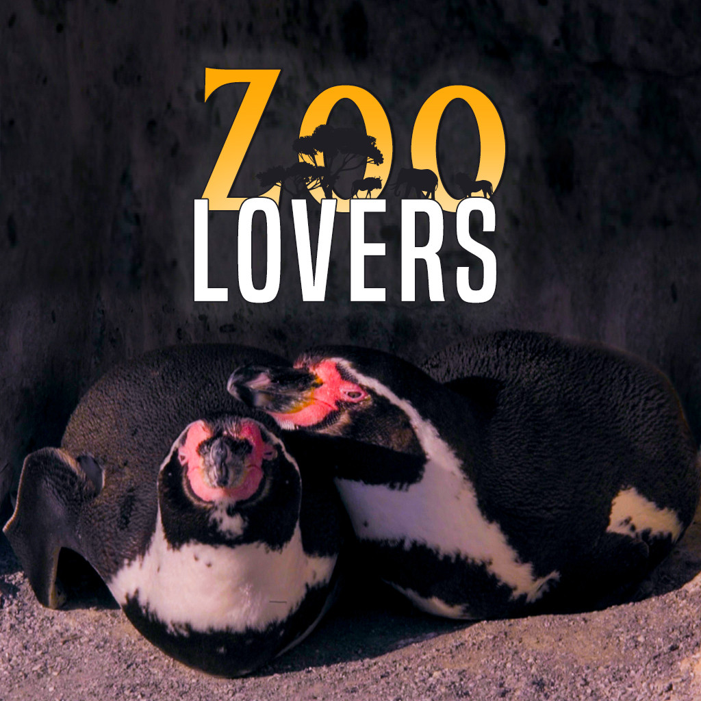 Zoo Lovers