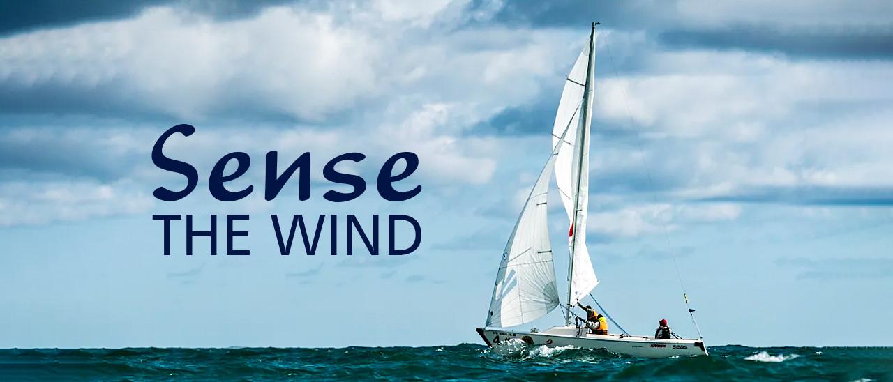 Sense The Wind