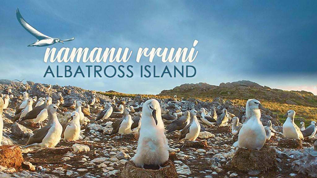 Namanu Rruni - Albatross Island